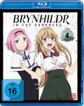 DVD: Brynhildr in the Darkness 4 [Blu-Ray]