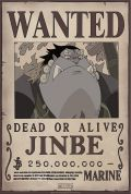 Poster: One Piece